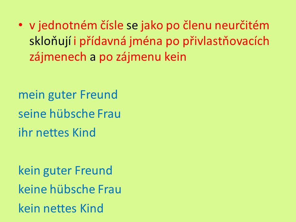 v jednotném čísle se jako po členu neurčitém skloňují i přídavná jména po přivlastňovacích zájmenech a po zájmenu kein mein guter Freund seine hübsche Frau ihr nettes Kind kein guter Freund keine hübsche Frau kein nettes Kind