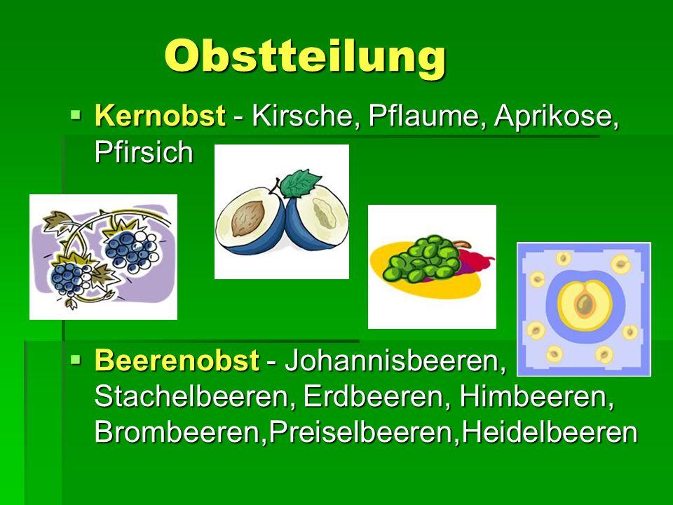 Obstteilung Obstteilung  Kernobst - Kirsche, Pflaume, Aprikose, Pfirsich  Beerenobst - Johannisbeeren, Stachelbeeren, Erdbeeren, Himbeeren, Brombeer