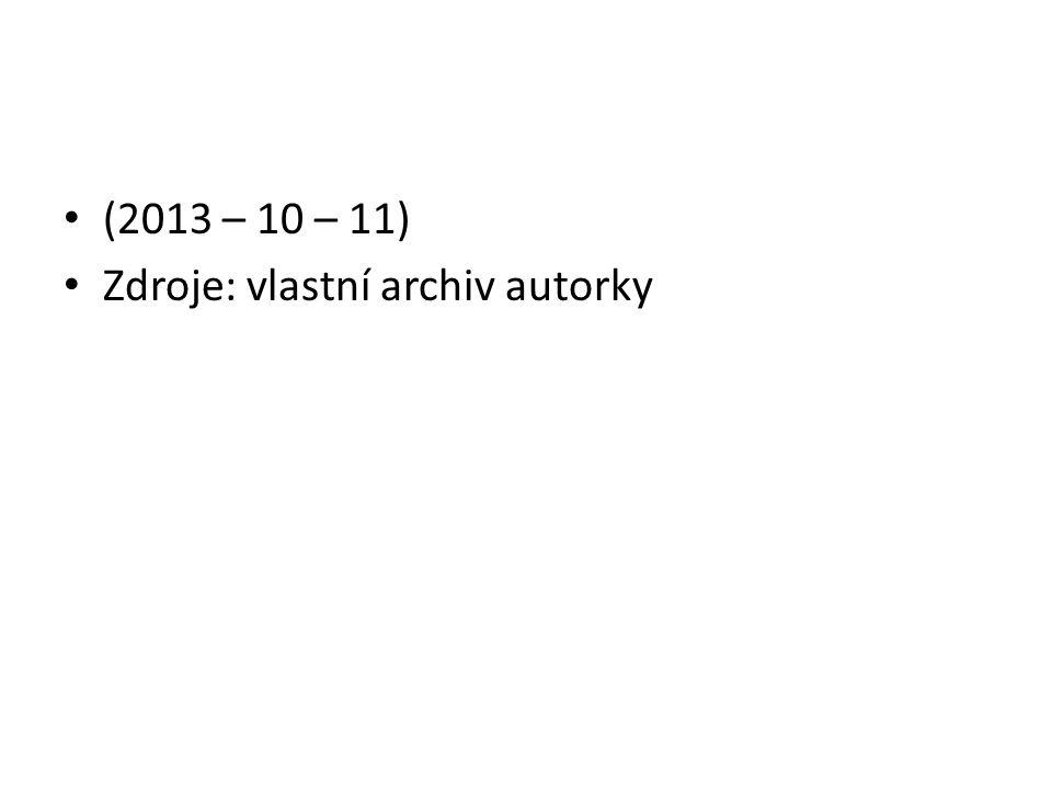 (2013 – 10 – 11) Zdroje: vlastní archiv autorky