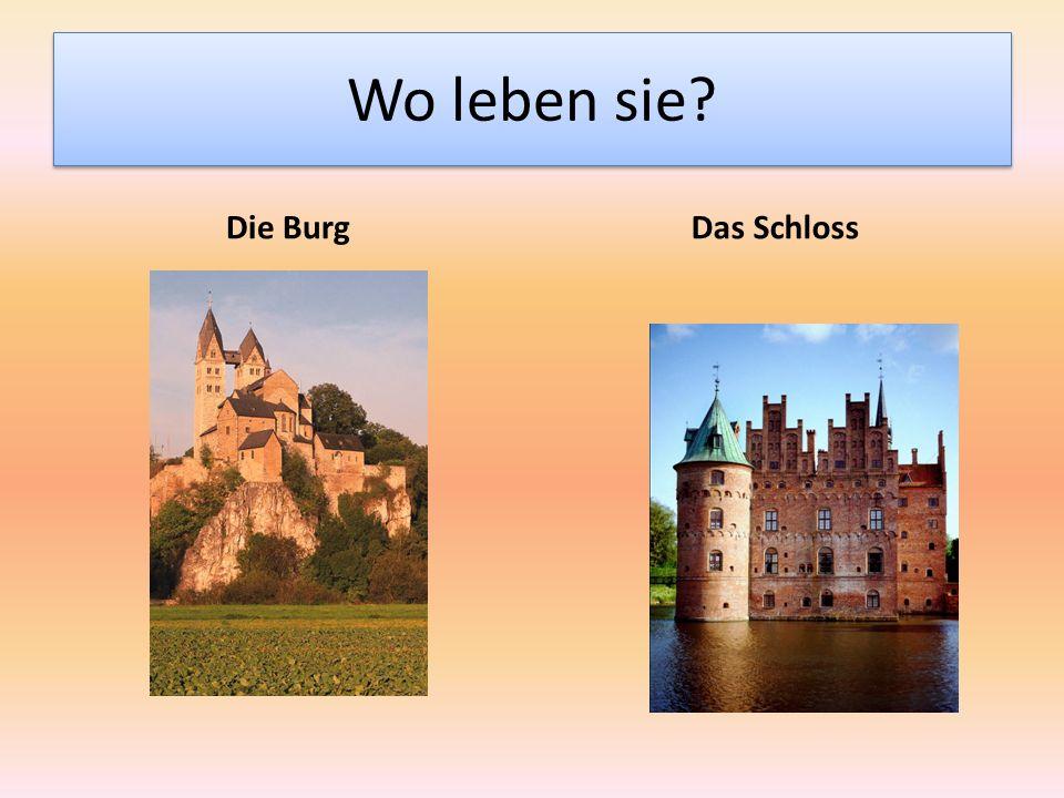 Wo leben sie? Die BurgDas Schloss