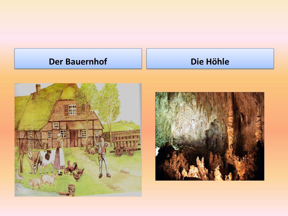 Der Bauernhof Die Höhle