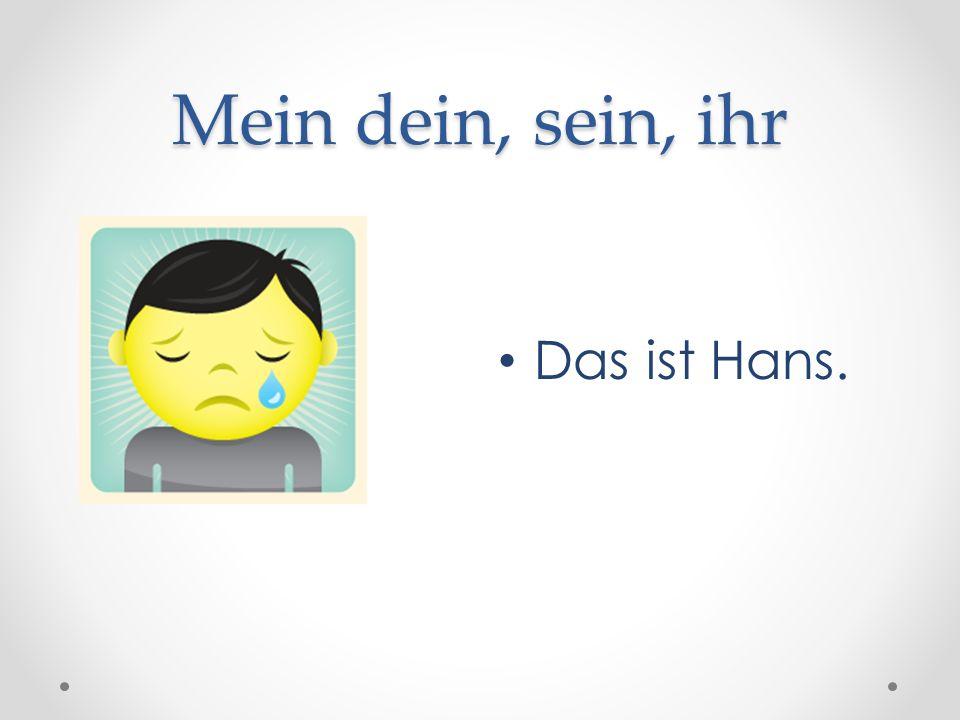 Mein dein, sein, ihr Das ist Hans.