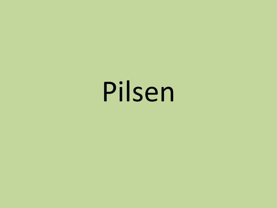 Basic information The centre of Pilsen region The 4th largest city in the Czech Republic Important industrial, commercial, administrative, cultural and religious (bishopric) centre 167,000 inhabitants, 125 sq km Consists of several historical and urban districts e.g.