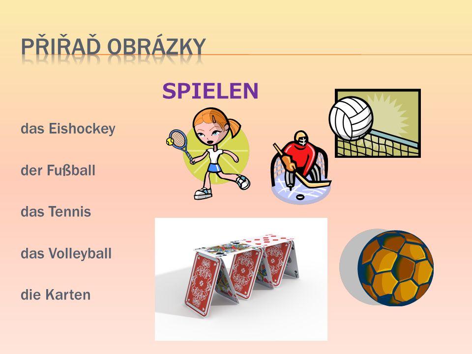 SPIELEN das Eishockey der Fußball das Tennis das Volleyball die Karten