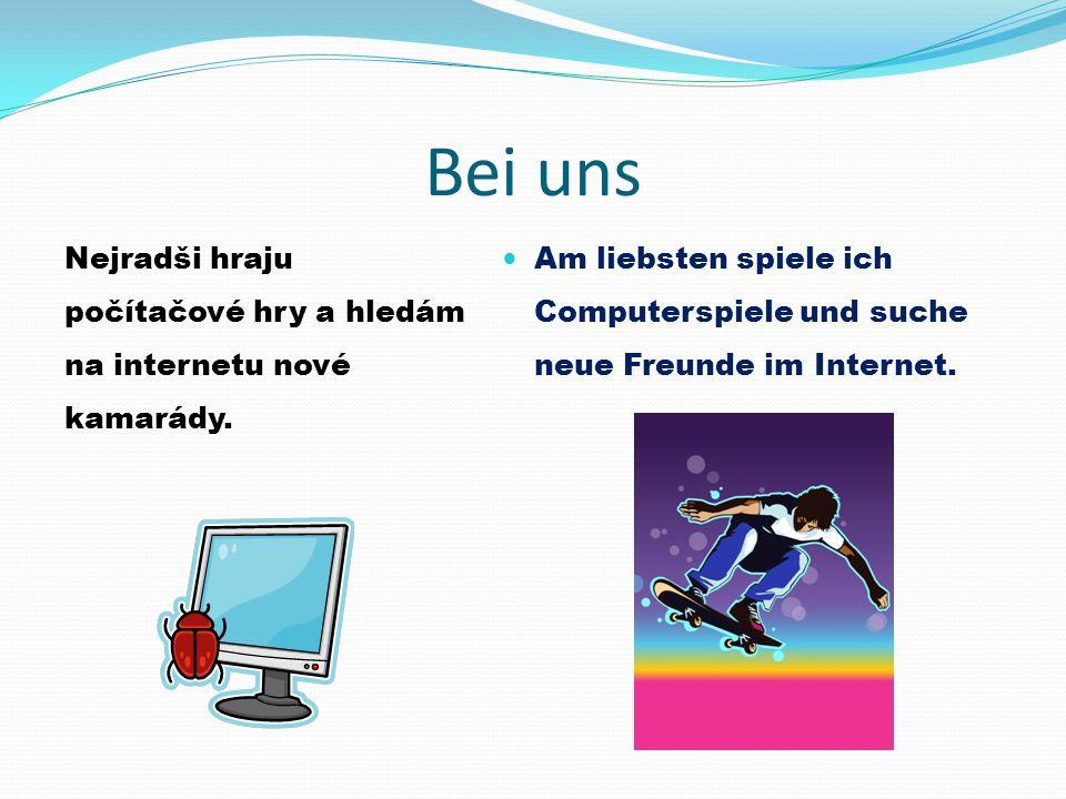 Bei uns Nejradši hraju počítačové hry a hledám na internetu nové kamarády.
