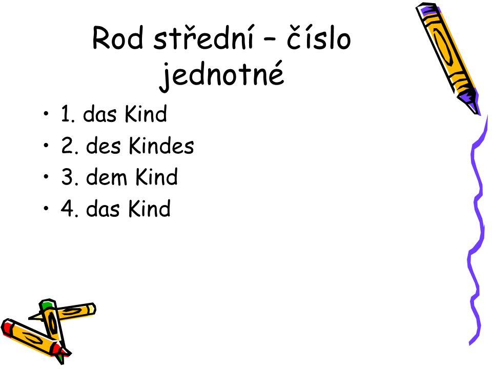 Rod střední – číslo jednotné 1. das Kind 2. des Kindes 3. dem Kind 4. das Kind