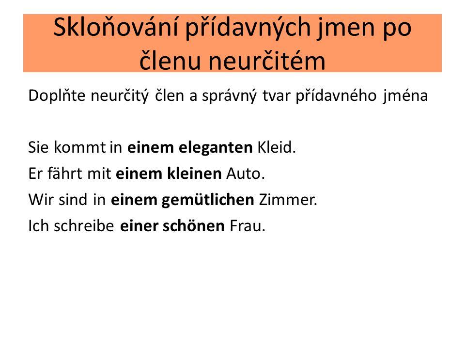 Skloňování přídavných jmen po členu neurčitém Doplňte koncovky přídavného jména Es war diesmal ein…..