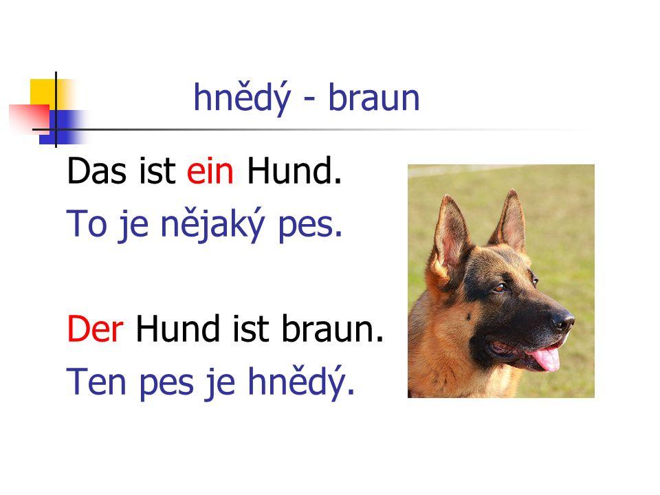 hnědý - braun Das ist ein Hund. To je nějaký pes. Der Hund ist braun. Ten pes je hnědý.
