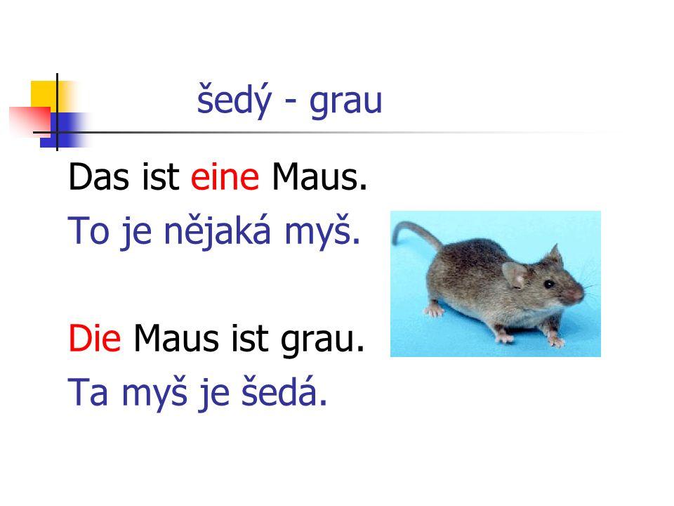 šedý - grau Das ist eine Maus. To je nějaká myš. Die Maus ist grau. Ta myš je šedá.