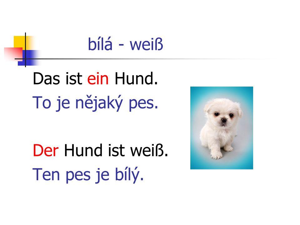 bílá - weiß Das ist ein Hund. To je nějaký pes. Der Hund ist weiß. Ten pes je bílý.