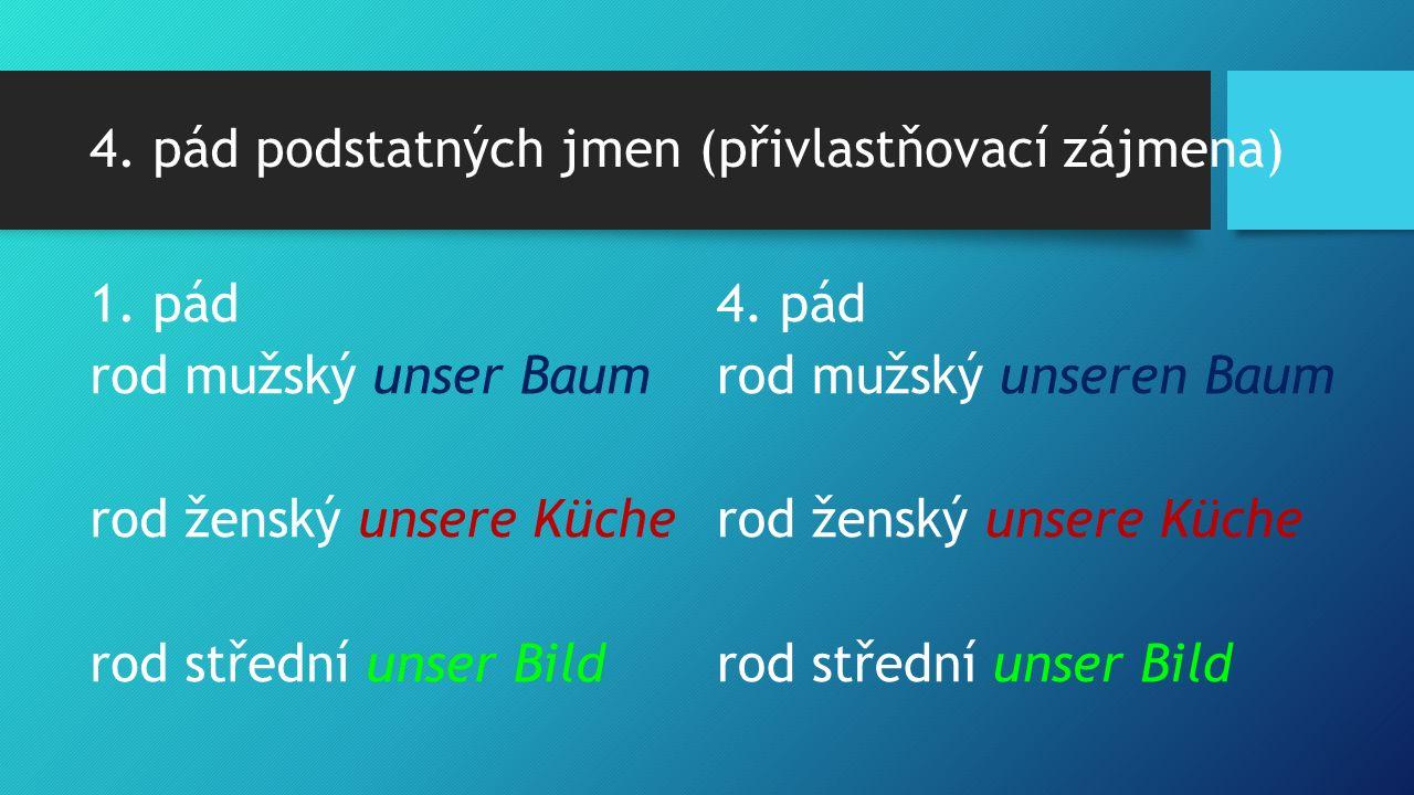 4. pád podstatných jmen (přivlastňovací zájmena) 1.