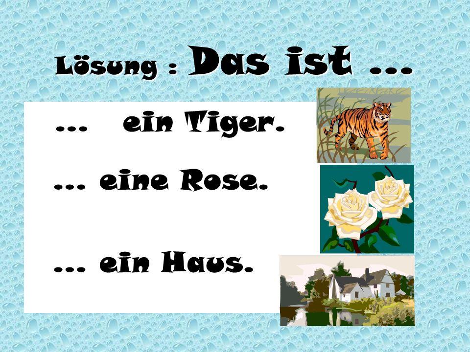 Lösung : Das ist … …ein Tiger. …ein Tiger. … eine Rose. … ein Haus.