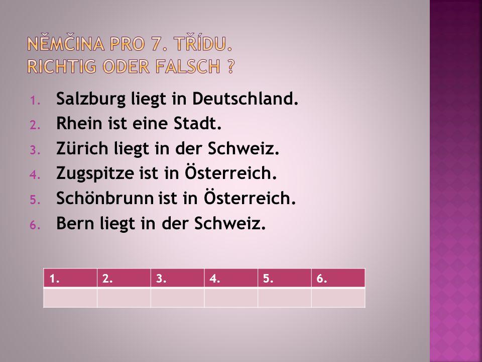 1. Salzburg liegt in Deutschland. 2. Rhein ist eine Stadt.