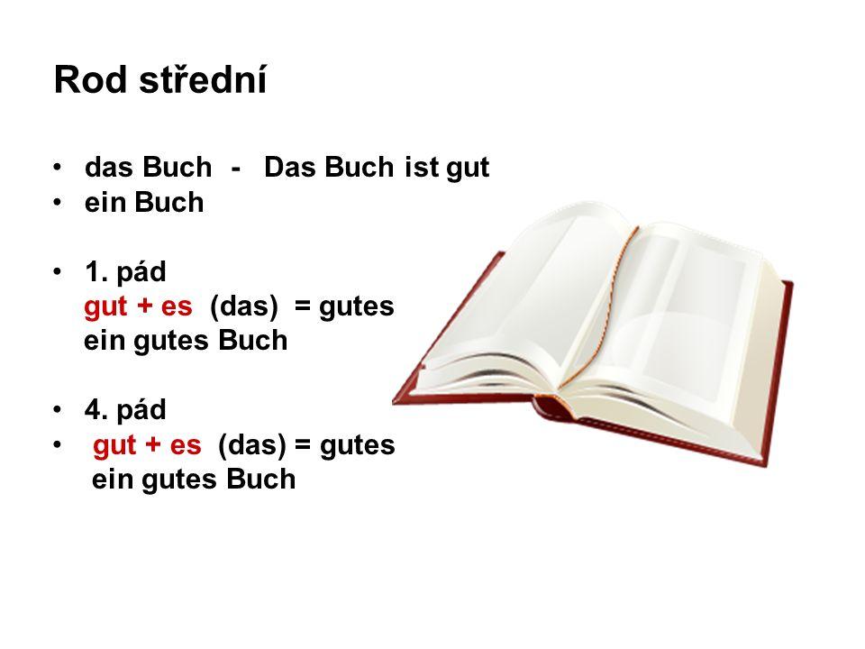 Rod střední das Buch - Das Buch ist gut ein Buch 1. pád gut + es (das) = gutes ein gutes Buch 4. pád gut + es (das) = gutes ein gutes Buch