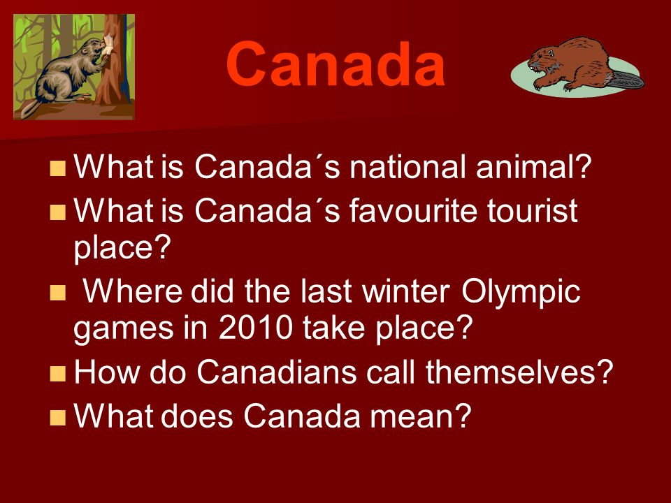 Canada What is Canada´s national animal.What is Canada´s favourite tourist place.