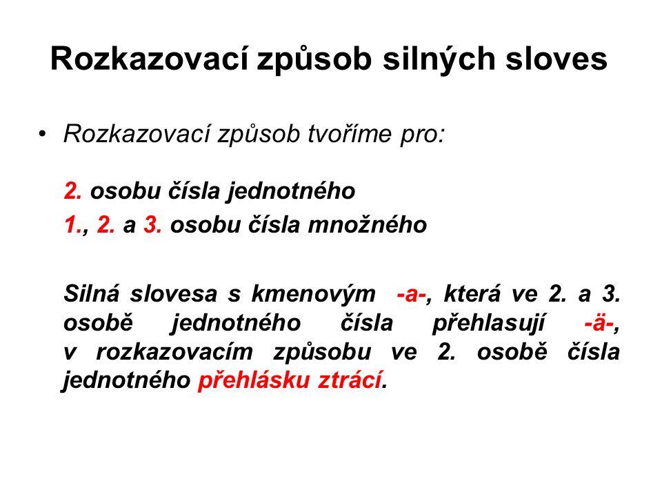 Rozkazovací způsob silných sloves Rozkazovací způsob tvoříme pro: 2.