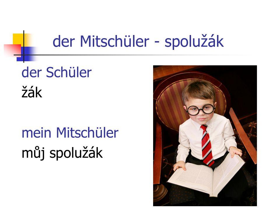 der Mitschüler - spolužák der Schüler žák mein Mitschüler můj spolužák