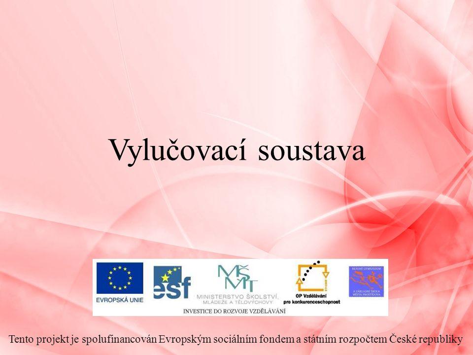 Vylučovací soustava Tento projekt je spolufinancován Evropským sociálním fondem a státním rozpočtem České republiky