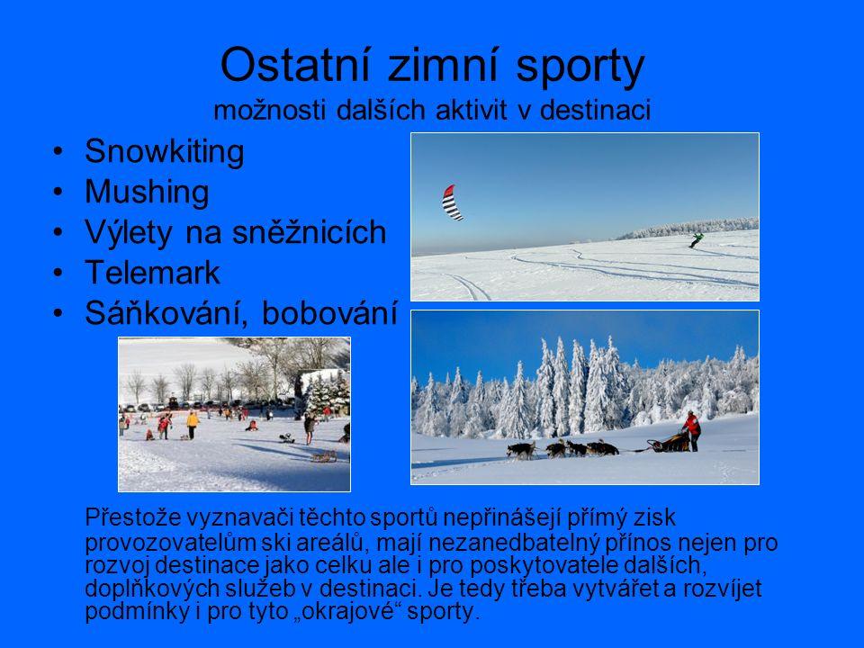 Ostatní zimní sporty možnosti dalších aktivit v destinaci Snowkiting Mushing Výlety na sněžnicích Telemark Sáňkování, bobování Přestože vyznavači těchto sportů nepřinášejí přímý zisk provozovatelům ski areálů, mají nezanedbatelný přínos nejen pro rozvoj destinace jako celku ale i pro poskytovatele dalších, doplňkových služeb v destinaci.