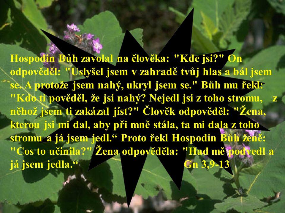 Lidské sobectví = hřích Hospodin Bůh zavolal na člověka: Kde jsi On odpověděl: Uslyšel jsem v zahradě tvůj hlas a bál jsem se.