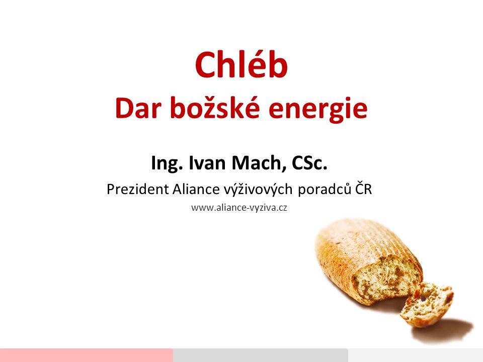 Chléb Dar božské energie Ing.Ivan Mach, CSc.