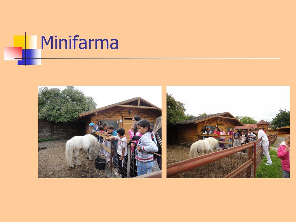 Minifarma