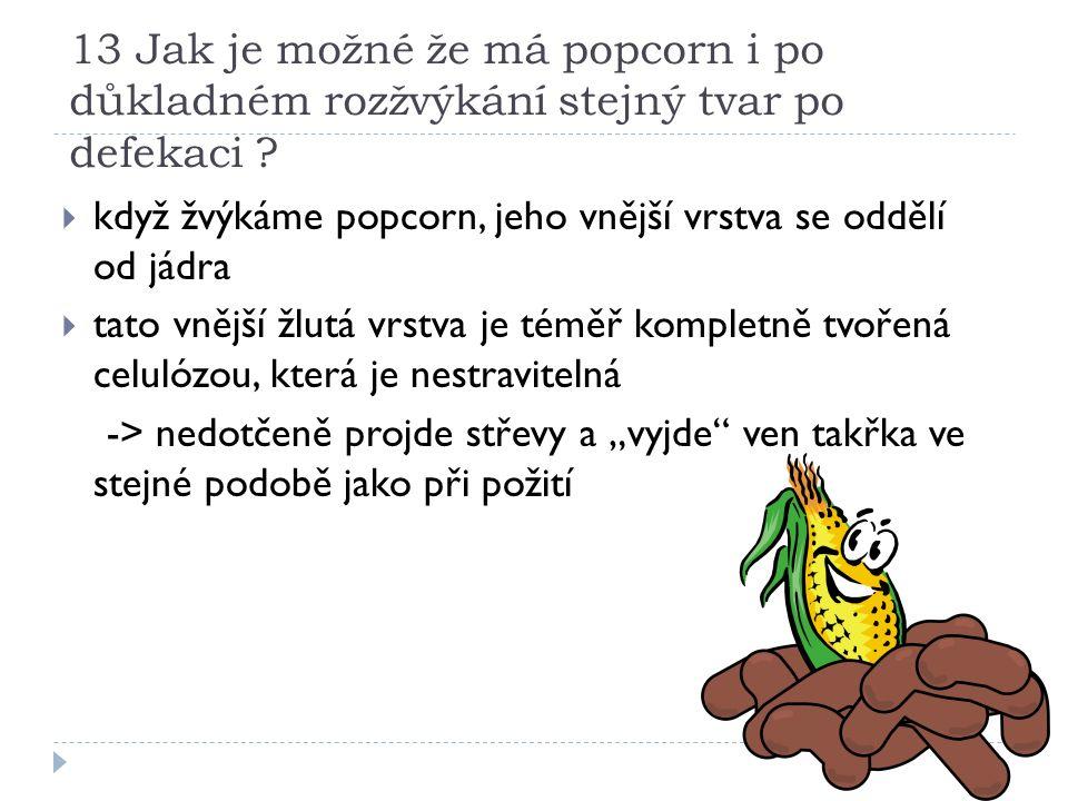13 Jak je možné že má popcorn i po důkladném rozžvýkání stejný tvar po defekaci .