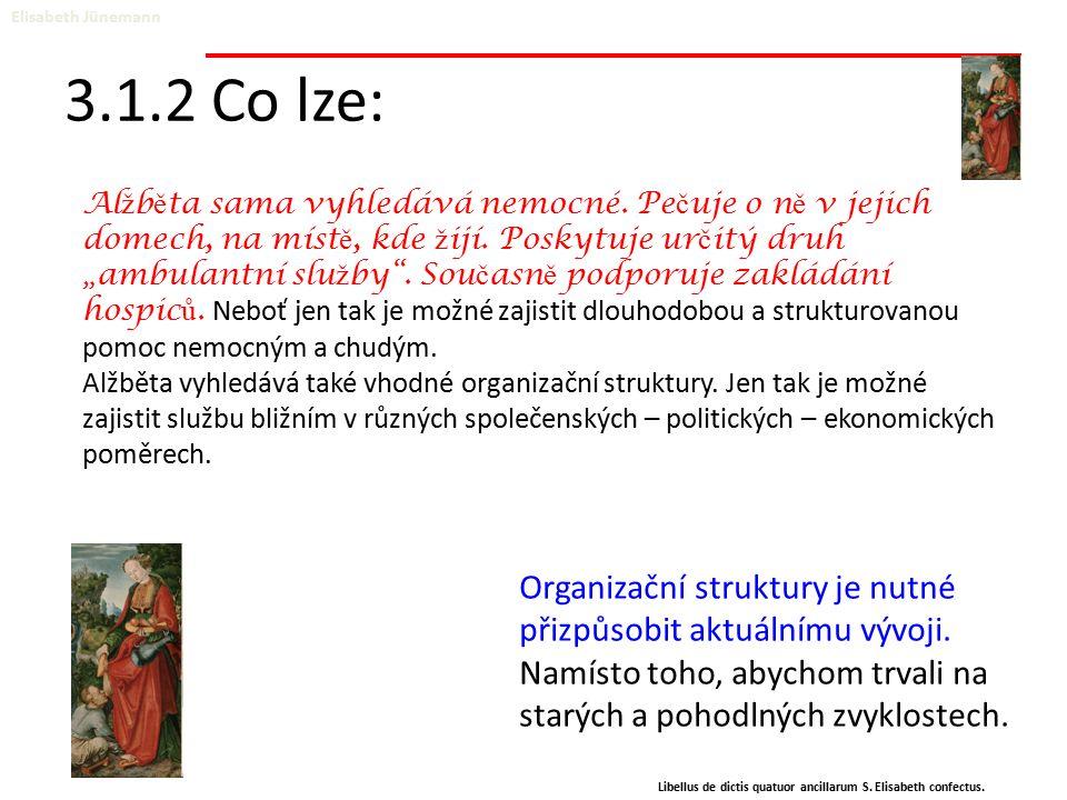 3.1.2 Co lze: Elisabeth Jünemann Libellus de dictis quatuor ancillarum S. Elisabeth confectus. Organizační struktury je nutné přizpůsobit aktuálnímu v