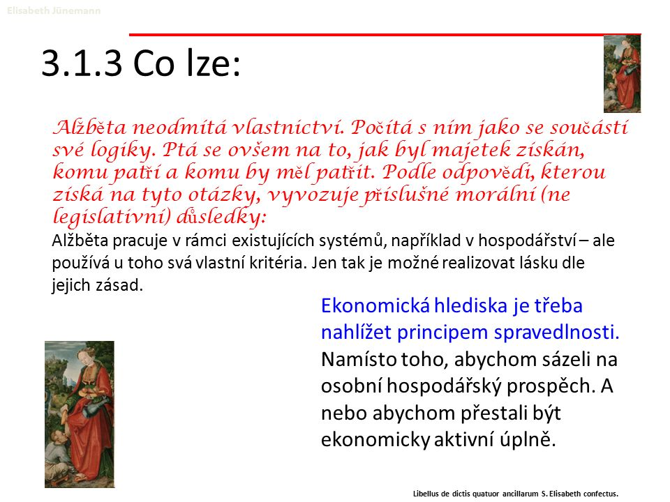 3.1.3 Co lze: Elisabeth Jünemann Libellus de dictis quatuor ancillarum S. Elisabeth confectus. Ekonomická hlediska je třeba nahlížet principem spraved