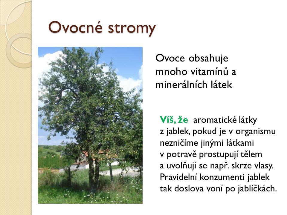 Ovocné stromy Ovoce obsahuje mnoho vitamínů a minerálních látek Víš, že aromatické látky z jablek, pokud je v organismu nezničíme jinými látkami v pot