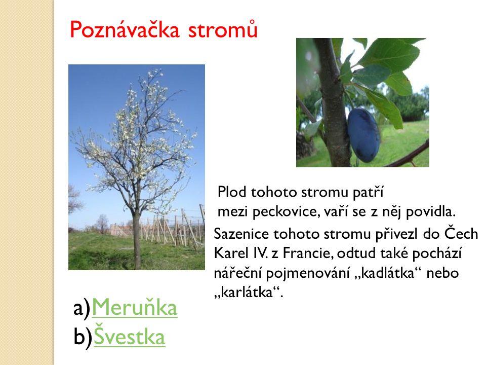 a)MeruňkaMeruňka b)ŠvestkaŠvestka Plod tohoto stromu patří mezi peckovice, vaří se z něj povidla. Sazenice tohoto stromu přivezl do Čech Karel IV. z F