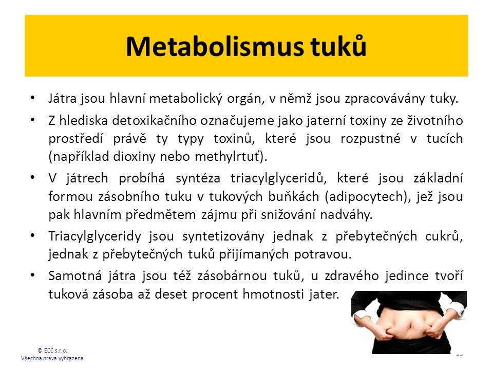 Metabolismus tuků Játra jsou hlavní metabolický orgán, v němž jsou zpracovávány tuky. Z hlediska detoxikačního označujeme jako jaterní toxiny ze život