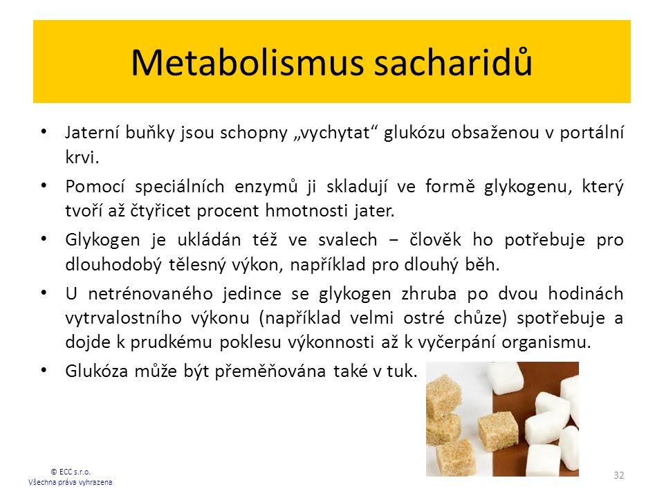 """Metabolismus sacharidů Jaterní buňky jsou schopny """"vychytat"""" glukózu obsaženou v portální krvi. Pomocí speciálních enzymů ji skladují ve formě glykoge"""