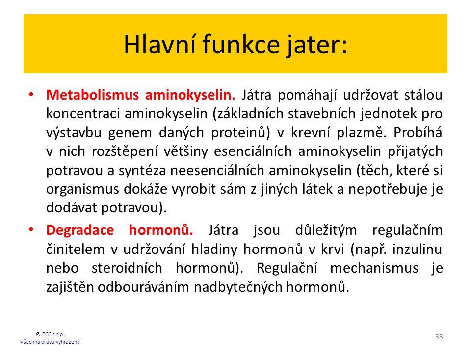 Hlavní funkce jater: Metabolismus aminokyselin. Játra pomáhají udržovat stálou koncentraci aminokyselin (základních stavebních jednotek pro výstavbu g