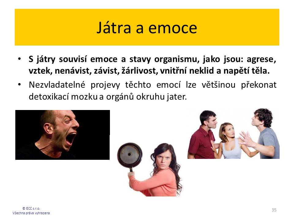 Játra a emoce S játry souvisí emoce a stavy organismu, jako jsou: agrese, vztek, nenávist, závist, žárlivost, vnitřní neklid a napětí těla.