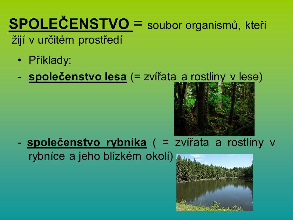 SPOLEČENSTVO = soubor organismů, kteří žijí v určitém prostředí Příklady: -společenstvo lesa (= zvířata a rostliny v lese) - společenstvo rybníka ( = zvířata a rostliny v rybníce a jeho blízkém okolí)