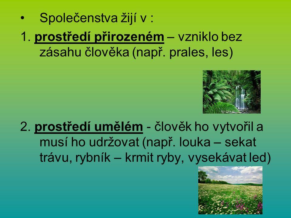 Společenstva žijí v : 1. prostředí přirozeném – vzniklo bez zásahu člověka (např.
