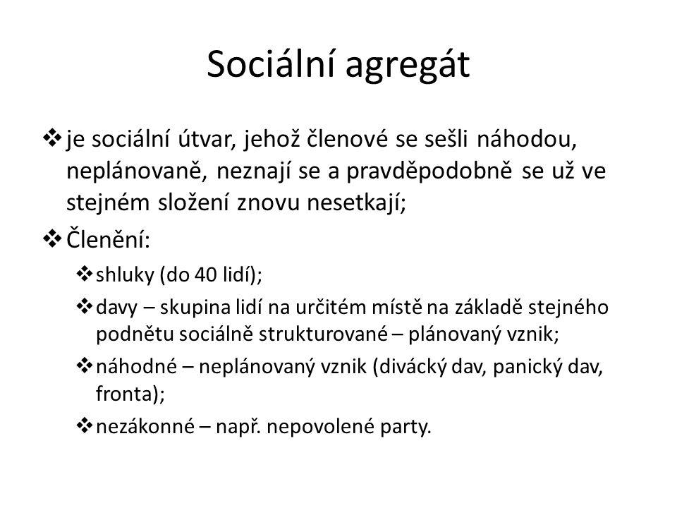 Sociální agregát  je sociální útvar, jehož členové se sešli náhodou, neplánovaně, neznají se a pravděpodobně se už ve stejném složení znovu nesetkají