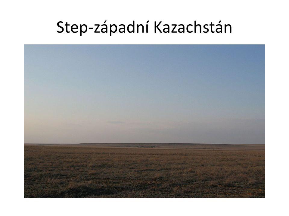 Step-západní Kazachstán