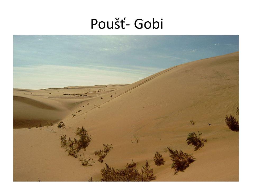 Poušť- Gobi