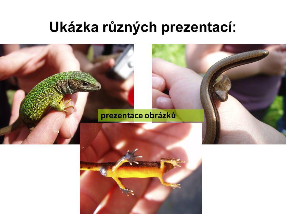 Využití informačních technologií ve výuce přírodopisu a biologie Mgr. Michaela Drozdová Mgr. Pavel Drozd, Ph.D.
