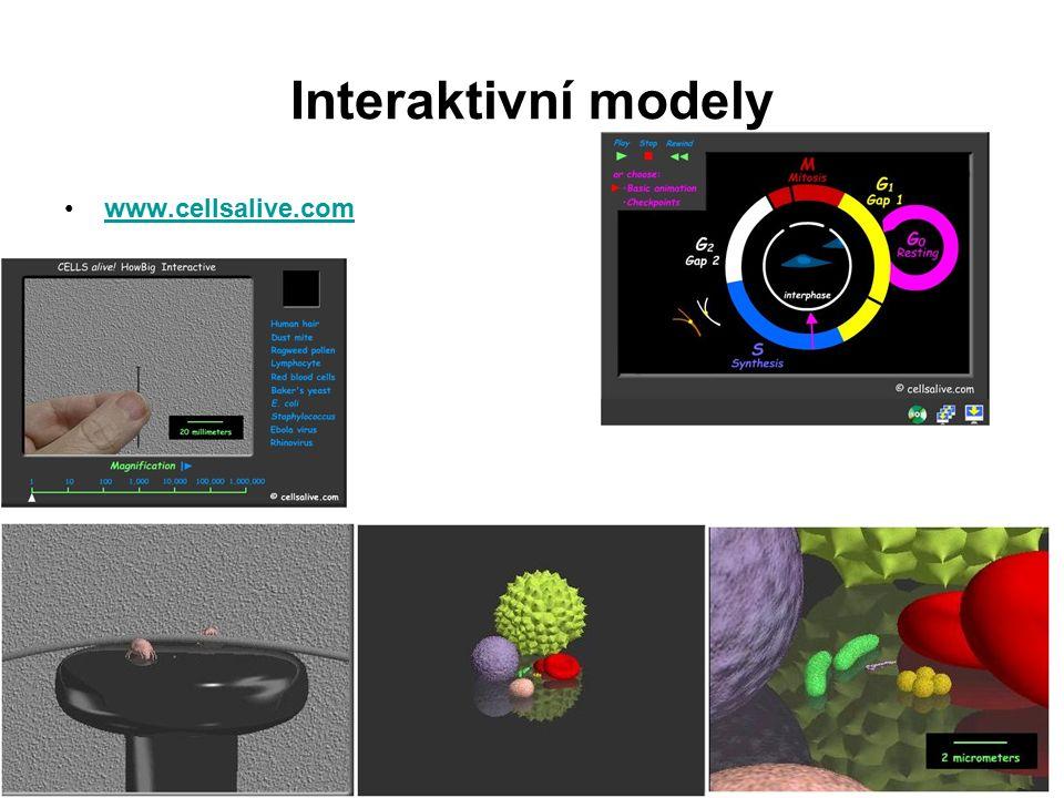 Počítačové hry jako motivační nástroj Interaktivní klíče Virtuální laboratoře Virtuální exkurze Interaktivní tabule
