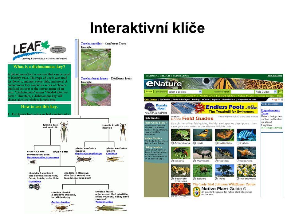 Virtuální laboratoře http://froggy.lbl.gov/virtual/ - virtuální pitva žábyhttp://froggy.lbl.gov/virtual/