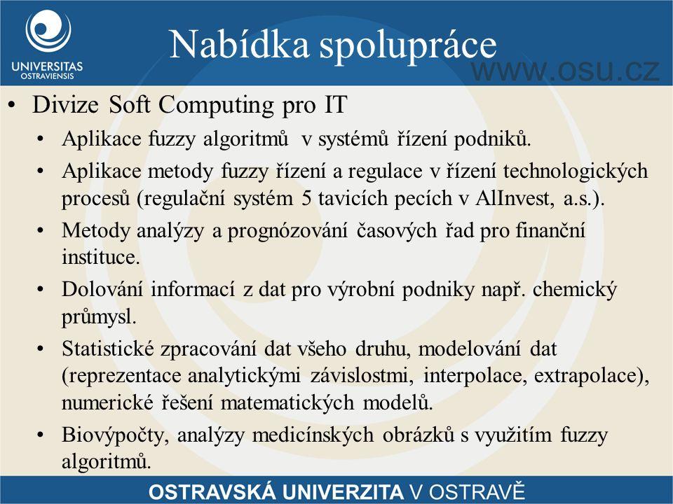 Nabídka spolupráce Divize Soft Computing pro IT Aplikace fuzzy algoritmů v systémů řízení podniků.