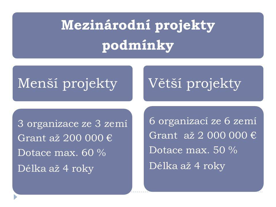 Mezinárodní projekty podmínky Menší projekty 6 organizací ze 6 zemí Grant až 2 000 000 € Dotace max.