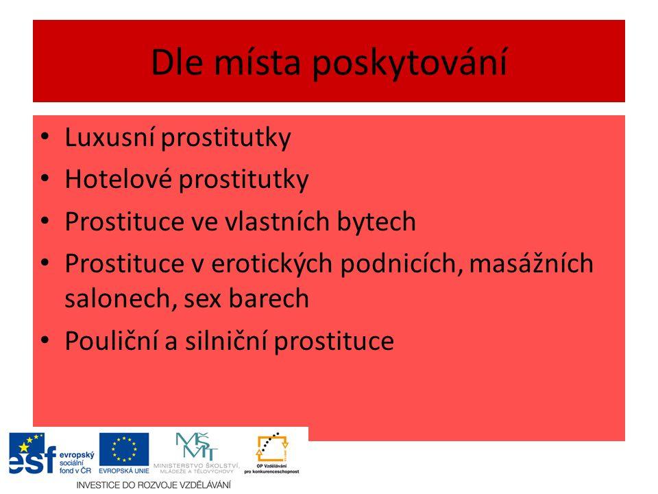 Dle místa poskytování Luxusní prostitutky Hotelové prostitutky Prostituce ve vlastních bytech Prostituce v erotických podnicích, masážních salonech, sex barech Pouliční a silniční prostituce