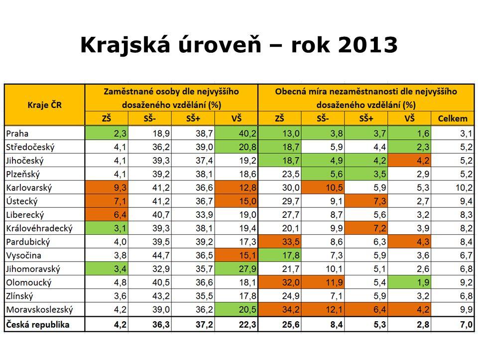 Krajská úroveň – rok 2013