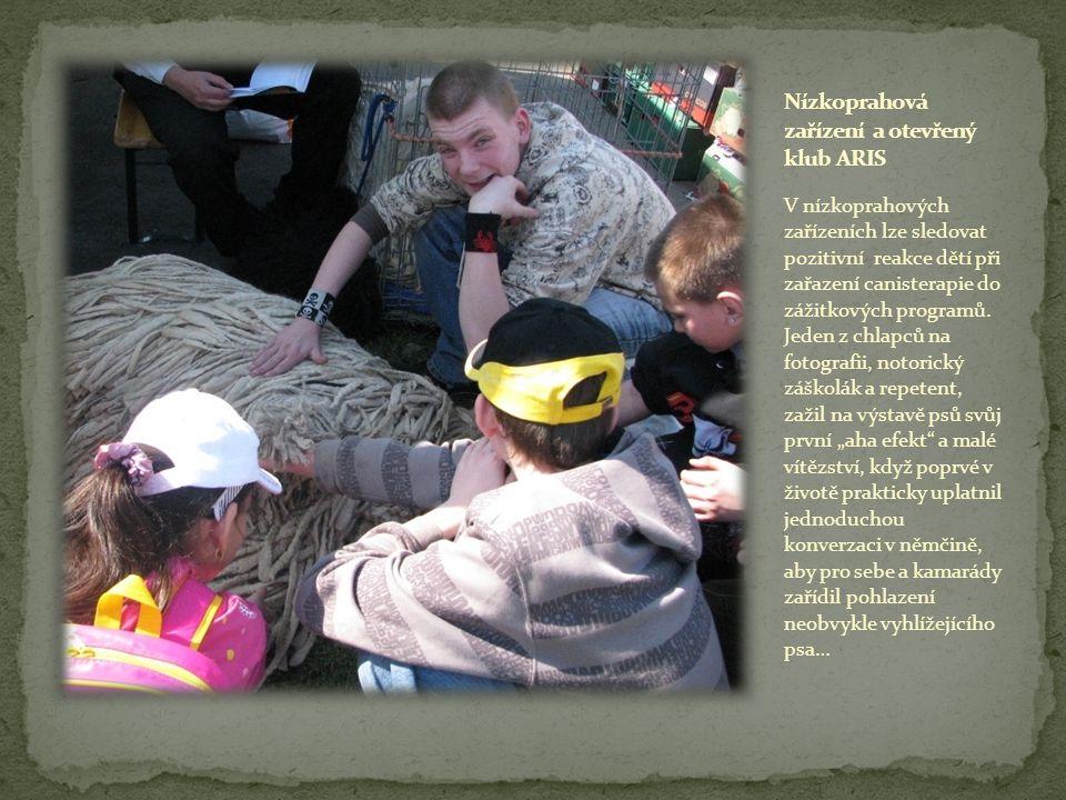 V nízkoprahových zařízeních lze sledovat pozitivní reakce dětí při zařazení canisterapie do zážitkových programů.