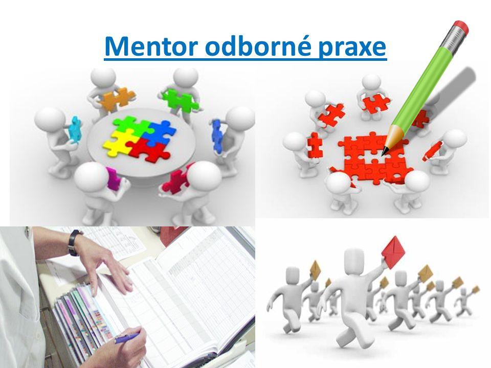 Mentor odborné praxe