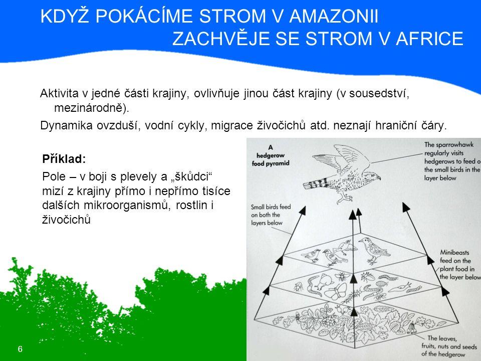 6 KDYŽ POKÁCÍME STROM V AMAZONII ZACHVĚJE SE STROM V AFRICE Aktivita v jedné části krajiny, ovlivňuje jinou část krajiny (v sousedství, mezinárodně).